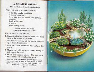 Minature garden